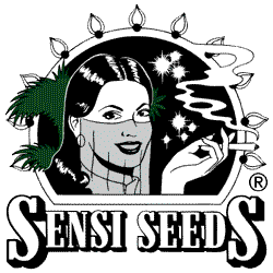 Sensi Seeds CBD Products