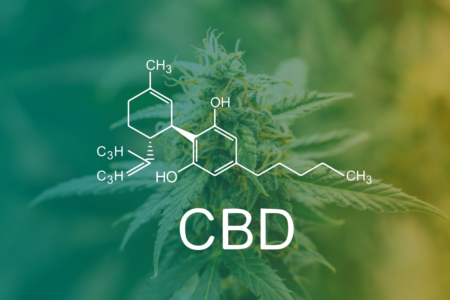CBD Chemical Formula, how CBD woks
